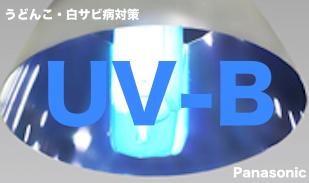 うどんこ病対策「UV-B電球形蛍光灯」のイメージ